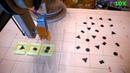 Contour detection (OpenCV) Robotic Arm sorter (arduino)