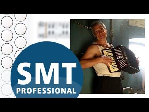 Как играть на гармони Человек и кошка | How to play on accordion | SMT Pro