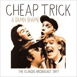 Cheap Trick альбом A Damn Shame (Live)