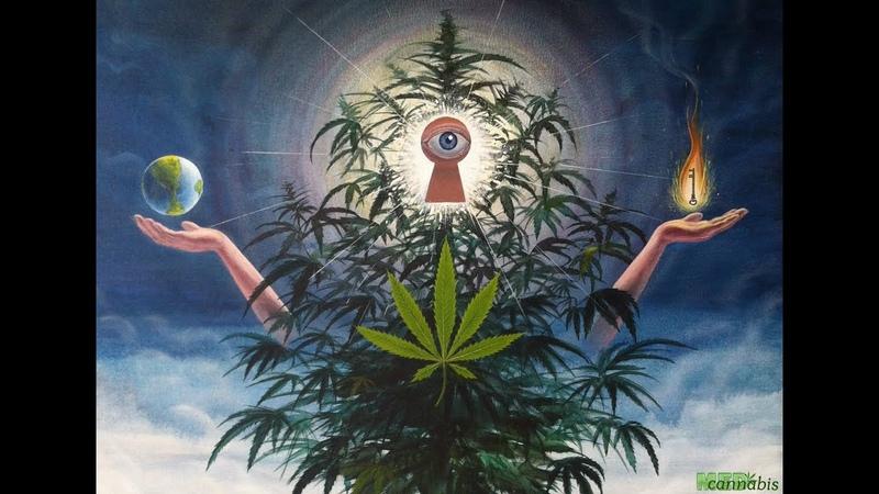 Запрещенный фильм о марихуане. Такого Вы не узнаете нигде! Высшее Растение На Высоте Культуры