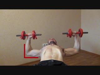 Жим гантелей лежа. Упражнение для мышц груди.