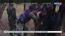Новости на Россия 24 Суд оправдал полевого командира причастного к карательным операциям против сербов
