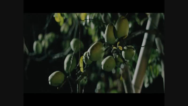 Nogizaka46 - Nichijou [1440x1080i h264 SSTV]