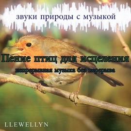 Llewellyn альбом Пение птиц для исцеления: непрерывная музыка без перерыва: звуки природы с музыкой