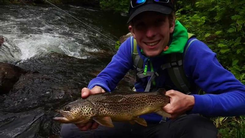 Brook Fishing in South Tyrol Ryuki Time