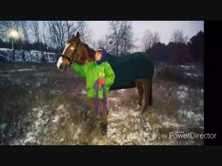 Первы снег и прогулка с лошадьми❄🐴