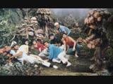 Matango 1963 / Attack of the Mushroom People / Нападение людей-грибов (rus)