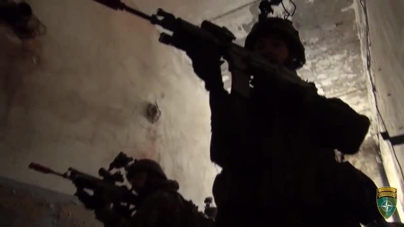 Підрозділ бельгійської армії у Естонії