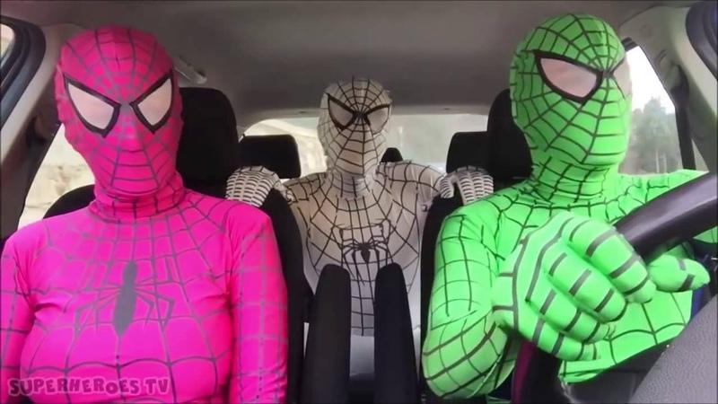 Синий, Зелёный Человек Паук и Розовая Девушка Паук Танцуют в Машине. - ПРИКОЛЫ