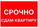 Объявление от Ksenia - фото №1