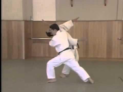 Yokomen Uchi Shomen Irimi Nage 1