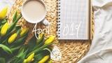 IndieRockAlternative Compilation - April 2019 (1-Hour Playlist)