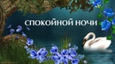 Красивое пожелание спокойной ночи добрых снов