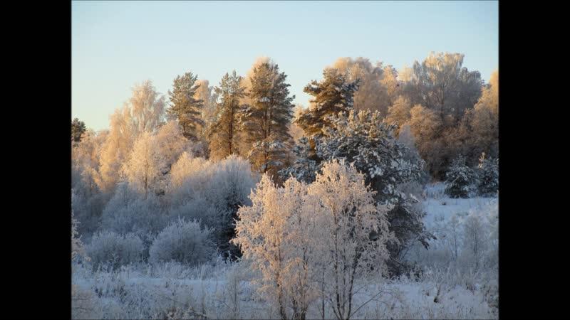 Зима в Городищенских местах