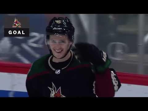 Аризона Койотис - Торонто Мэйпл Лифс Обзор матча NHL 17022019