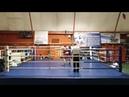 Открытый турнир по боксу на призы Н. С. Валуева, Санкт-Петербург 2019