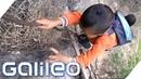 Der gefährlichste Berg Aufstieg Chinas Galileo ProSieben