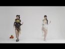 [Biting Cat x Bite Meow] Taoyuan Love Song