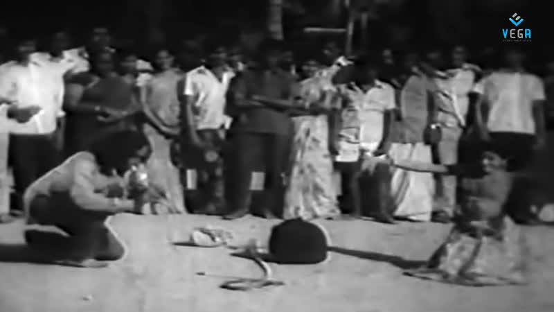 Фрагмент фильма Engal Kula Deivam (tamil, 1974)