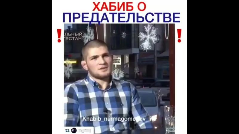 Gordy_kavkazBo_9Ea2nAIj.mp4