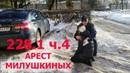 Арест Милушкиных комментарии адвоката