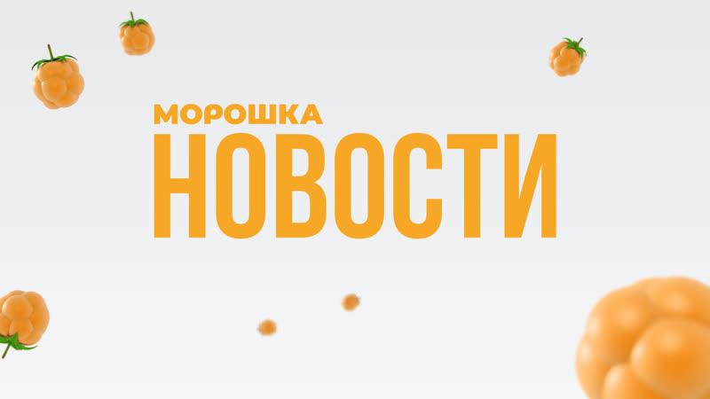 НОВОСТИ: Аниматорское движение ПетрГУ, Форум добровольцев, ОВК профорга ИЛГИСН