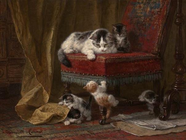 Почему коты могут заходить в храм, а собаки – нет