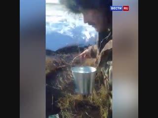 Жители Казахстана устроили