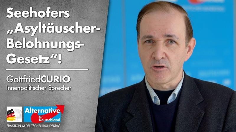 Gottfried Curio zu Seehofers Asyltäuscher- Belohnungs- Gesetz!- AfD-Fraktion im Bundestag