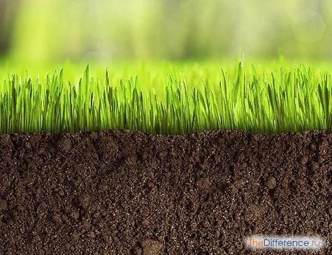 Разница между землей и почвой