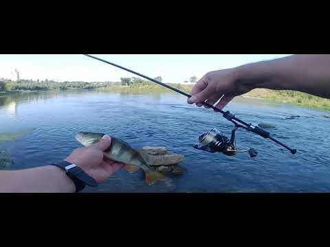 Спиннинг КОЩЕЙ МОРМЫШКИ = Много Разной Рыбы