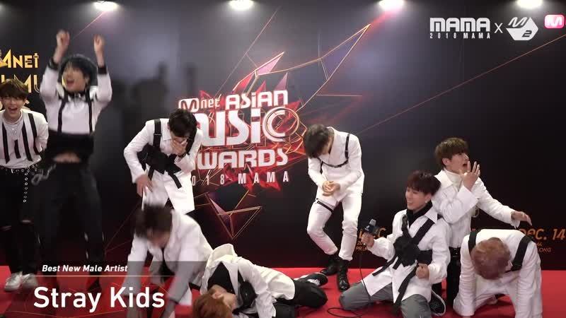 [181210] Stray Kids at Thank You Stage » 2018 MAMA PREMIERE in KOREA
