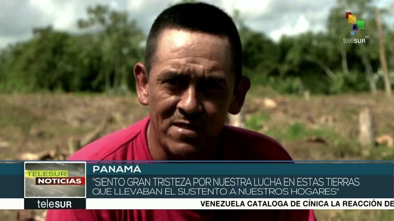 Productores panameños denuncian intentos de desalojo de sus tierras