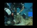 ВИДЕО: утонувшие сокровища