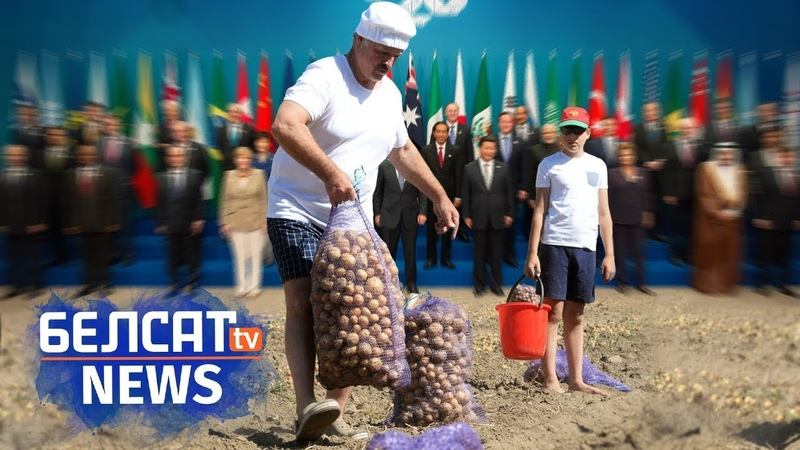 Апошні шанец Лукашэнкі бульба Последний шанс Лукашенко картошка