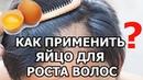 Как помогает яйцо для роста волос | Маска от выпадения волос с яйцом | Маска для роста волос