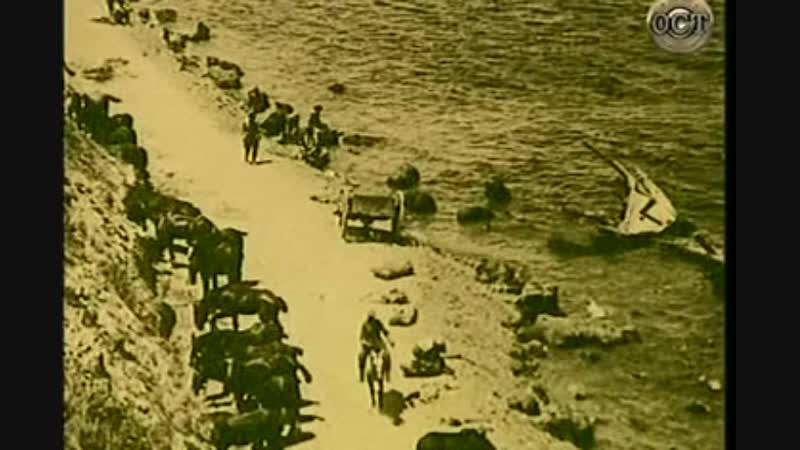 Галлиполи 1915 года. Кровавый полуостров.