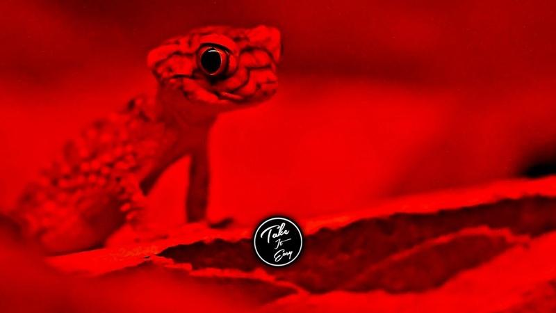 Boris Brejcha - Chameleon (Unreleased) [Melodic Techno]