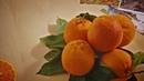 Storie di agrumi: l'arancia
