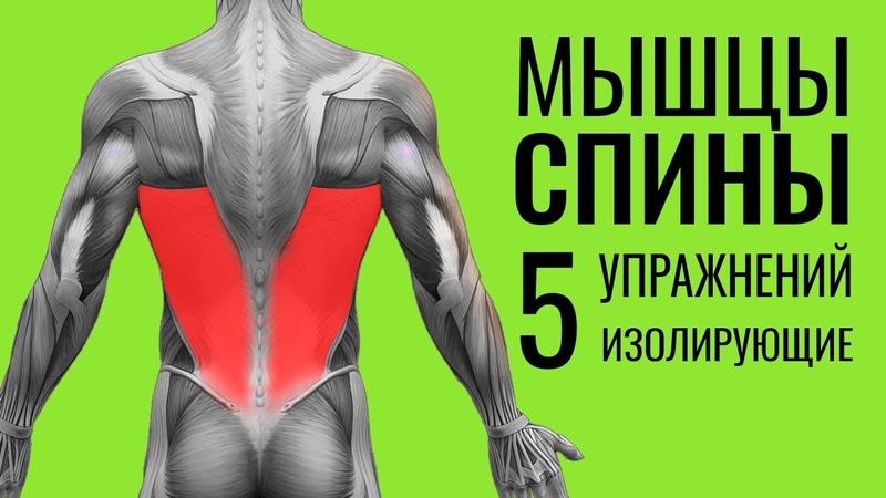 МЫШЦЫ СПИНЫ. 5 упражнений ОШИБКИ УНИЧТОЖАЮЩИЕ ПРОГРЕСС!