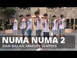 NUMA NUMA 2 by Dan Balan,Marley Waters Zumba TML Crew Jay Laurente