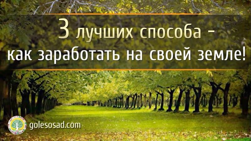 Три лучших способа как заработать на своей земле!