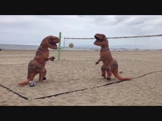 T Rex Beach Volleyball