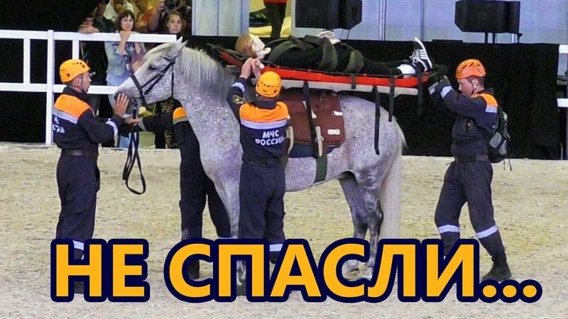 Никто не ожидал ТАКОГО финала спасательной операции /ИППОсфера 2018 выставка лошадей Hipposphere
