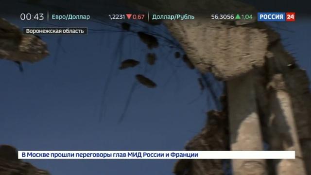 Новости на Россия 24 • Только личное обращение депутата к Мединскому спасло памятник войны от полного разрушения