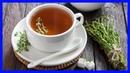 Beneficios de Usar Plantas Medicinales