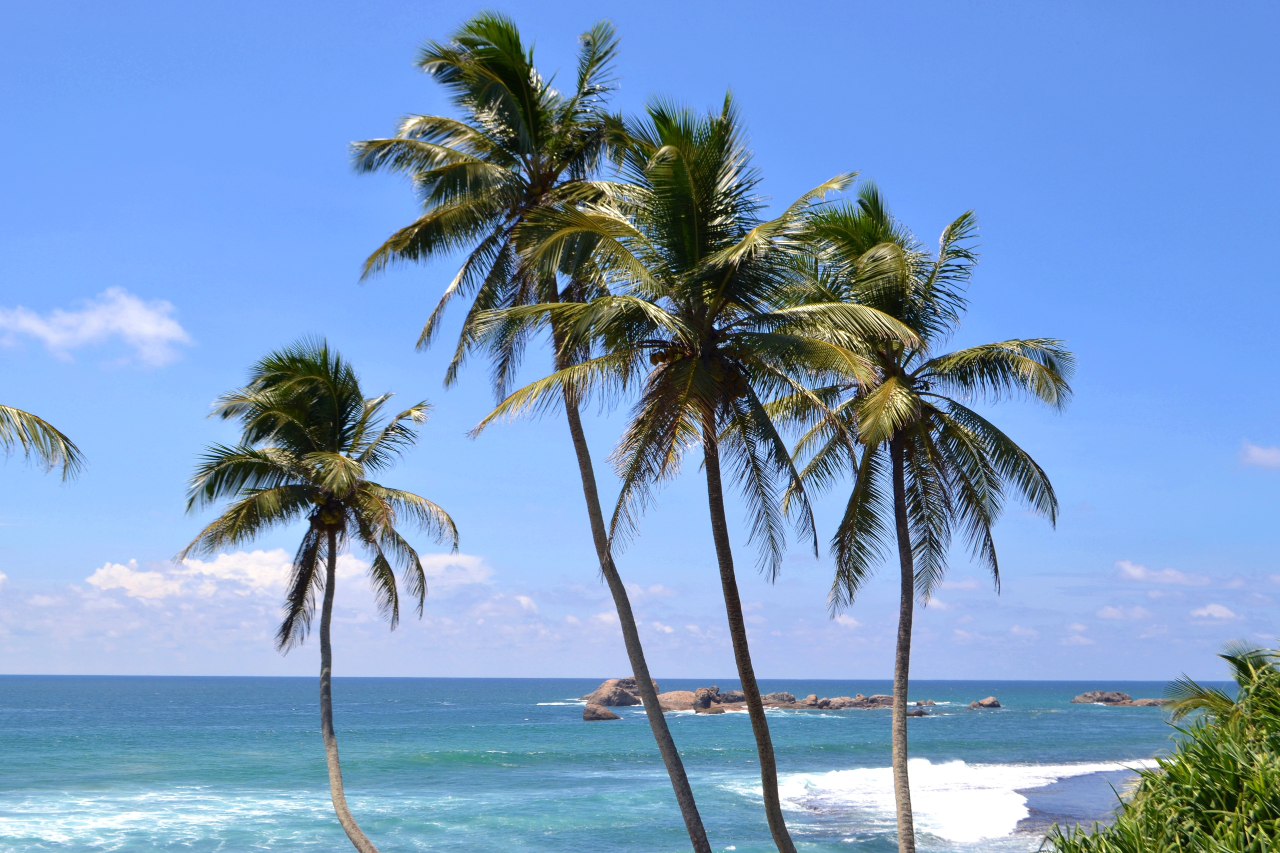 Шри Ланка (фото) Ymc-uEex76c
