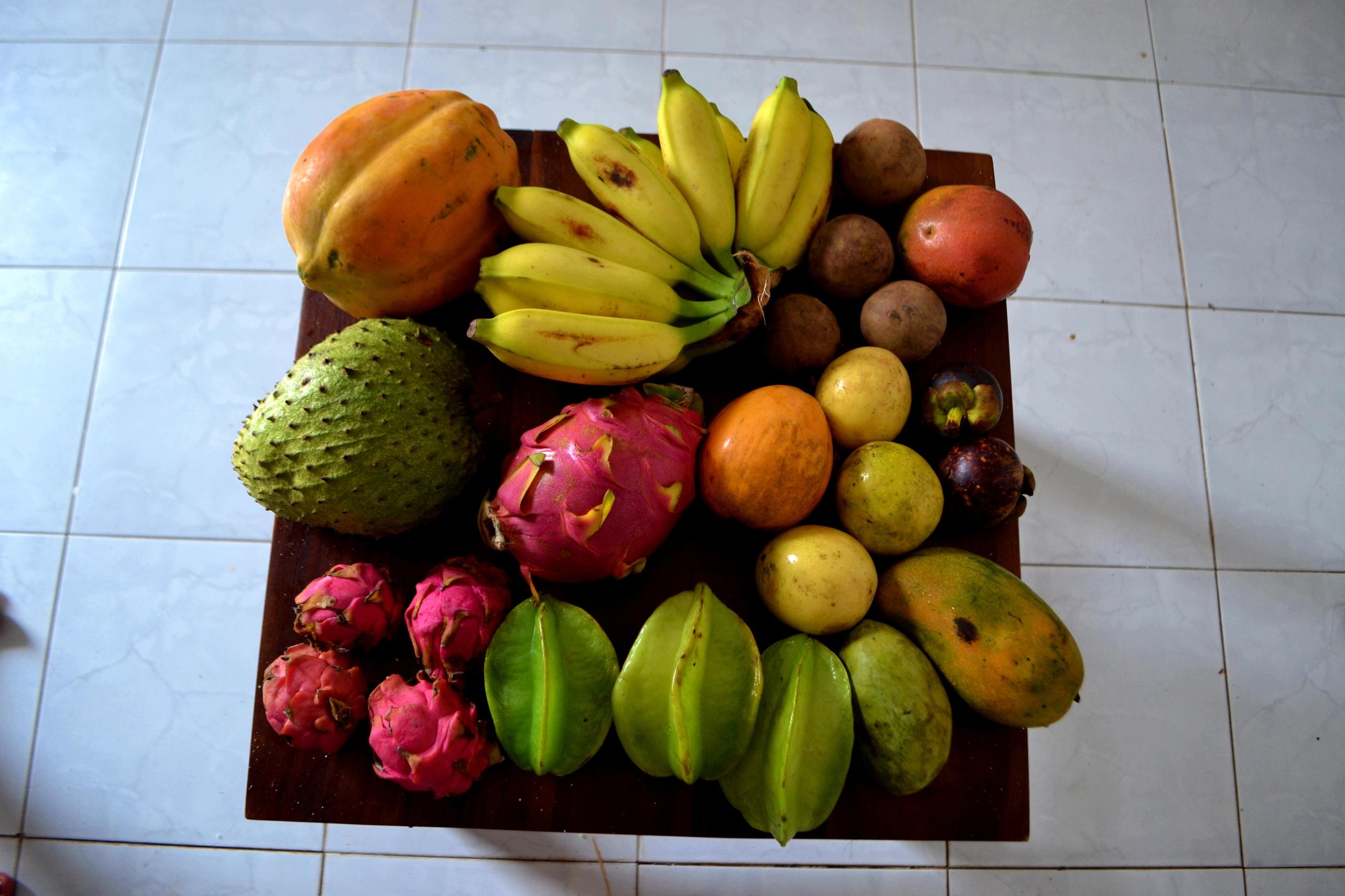 Шри Ланка (фото) 1JN8J6XTnQk