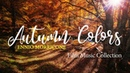 Ennio Morricone Autumn Colors Film Music Collection⎪High Quality Audio