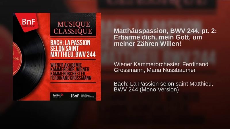Matthäuspassion, BWV 244, pt. 2: Erbarme dich, mein Gott, um meiner Zähren Willen!